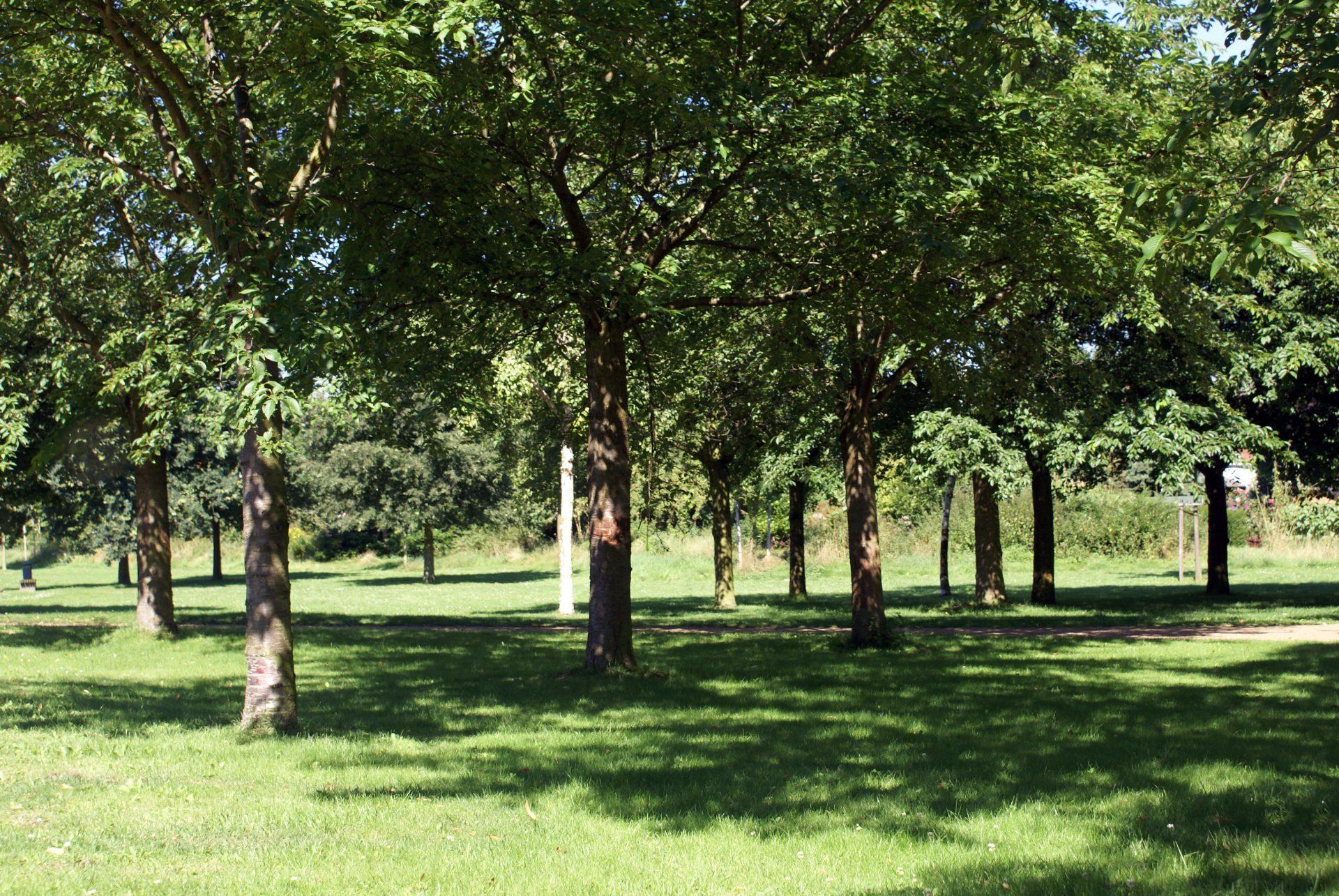 Jubiläumsgarten Viersen