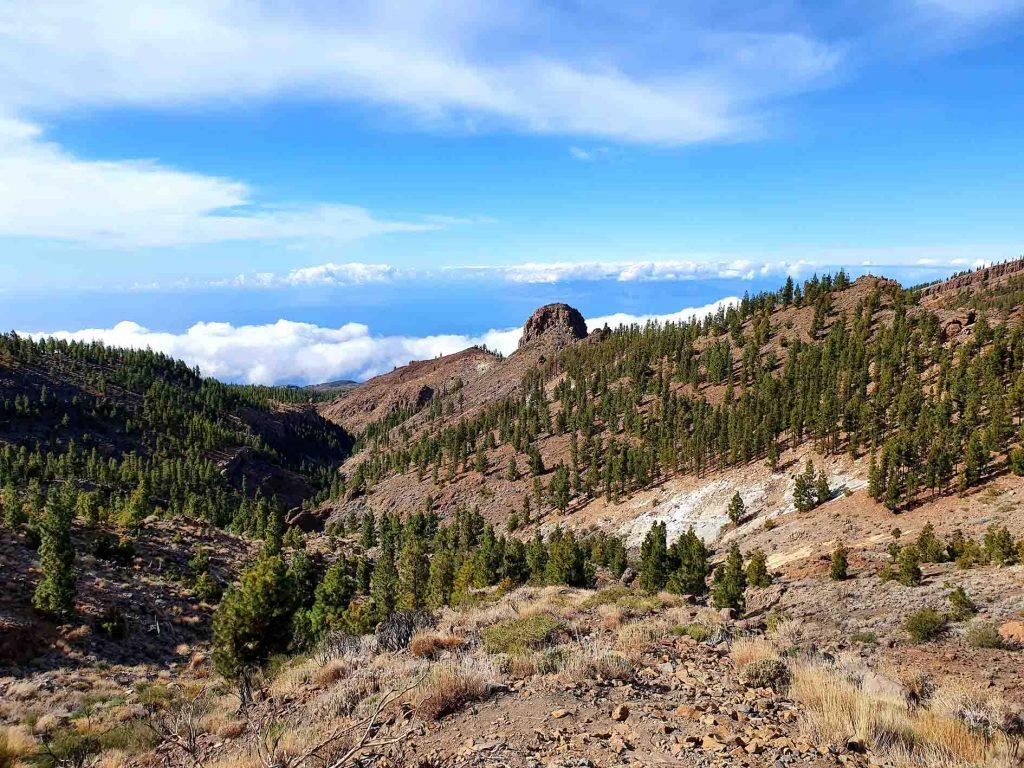 Teide Naturschutzgebiet